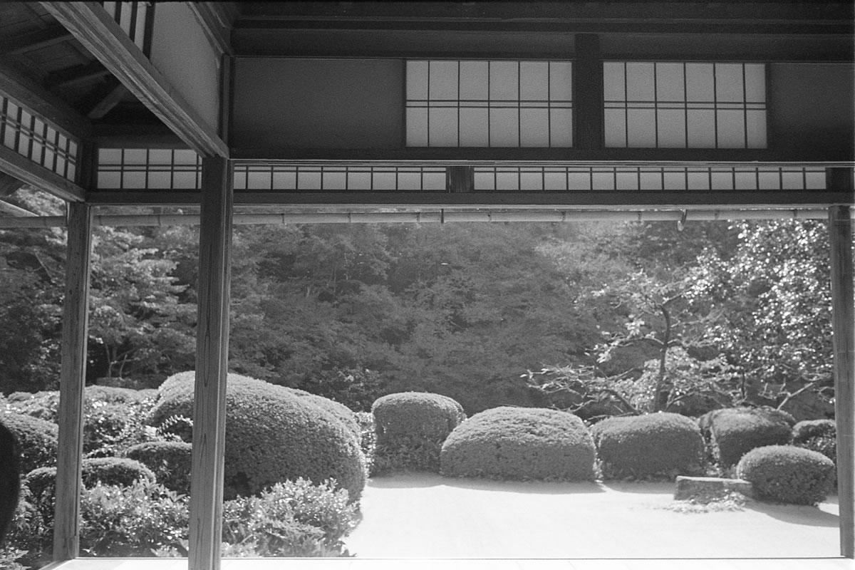 詩仙堂 LEICA M5 + SUMMILUX 35mm F1.4 + Kodak TRI-X 400