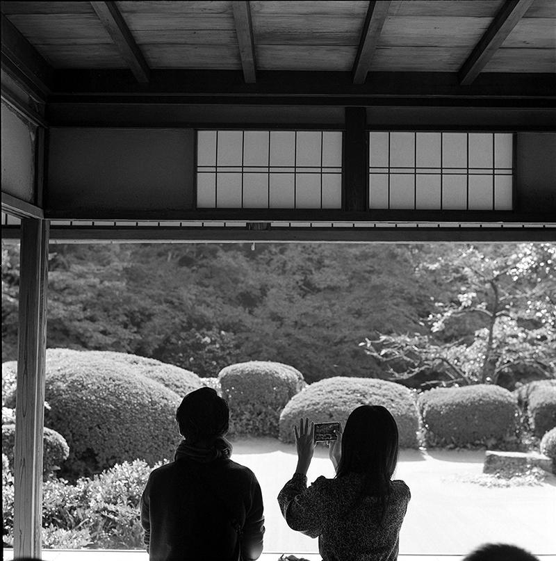 詩仙堂|ROLLEIFLEX 2.8F + Kodak TRI-X 400