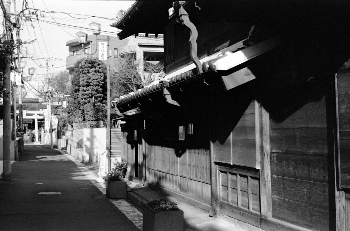 浦安のフラワー通り|Leica M3 + C Sonnar T* 1.5/50 ZM + Fujifilm Neopan 400 Presto