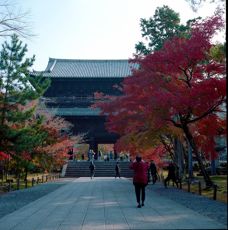 南禅寺|ROLLEIFLEX 2.8F + KODAK PORTRA 160