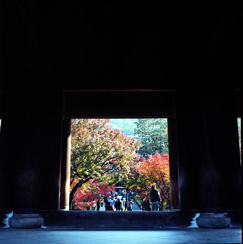 南禅寺の門から|ROLLEIFLEX 2.8F + KODAK PORTRA 160