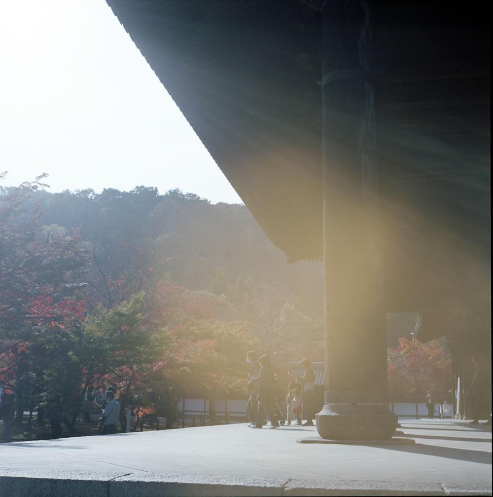ローライフレックスで撮る境内の逆光|ROLLEIFLEX 2.8F + KODAK PORTRA 160