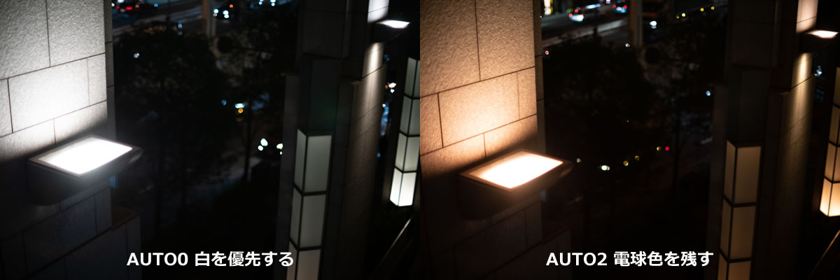 ホワイトバランス対決:「白を優先」vs「電球色」 |Nikon D850 + AI Nikkor 50mm f/1.2S