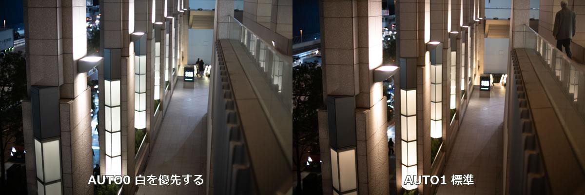 ホワイトバランス対決:「白を優先」vs「標準」 |Nikon D850 + AI Nikkor 50mm f/1.2S