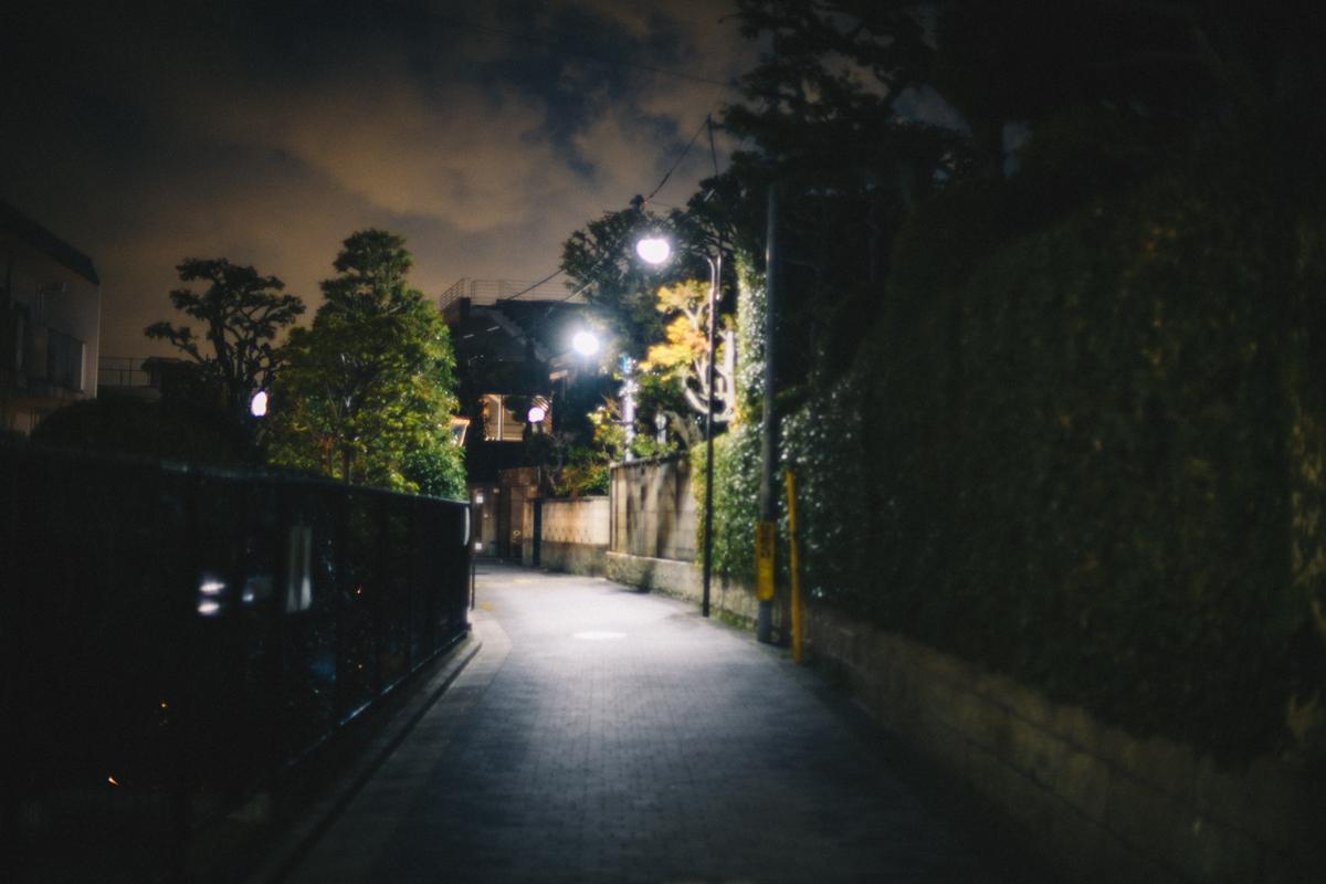 自然光オートで撮影|Nikon D850 + AI Nikkor 50mm f/1.2S
