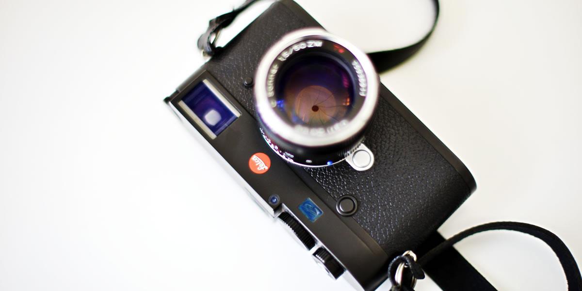 最近のカメラがさらに高画素化していてビックリ|Nikon D800 +  AI Nikkor 50mm f/1.2S