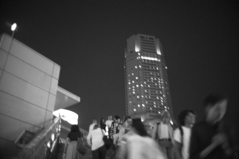 セルリアンタワーへ