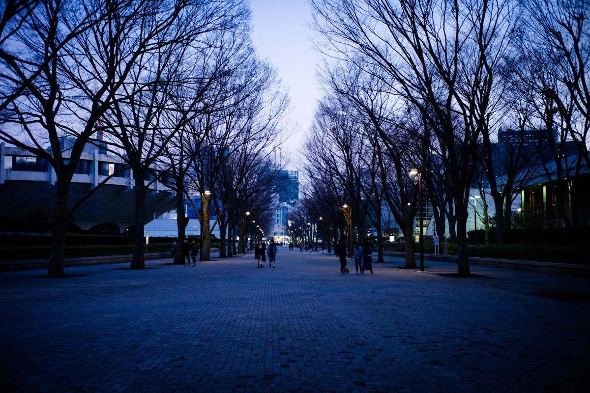 夕暮れの代々木公園|Leica M10 + Summilux 35mm f1.4