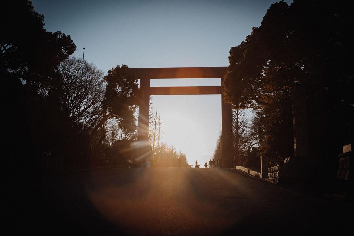 夕日に染まる靖国神社|Leica M10 + Summilux 35mm f1.4