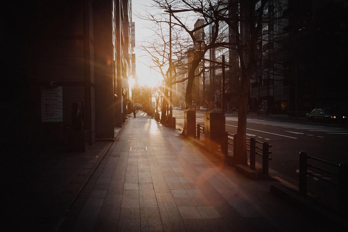 逆光の靖国通り|Leica M10 + Summilux 35mm f1.4