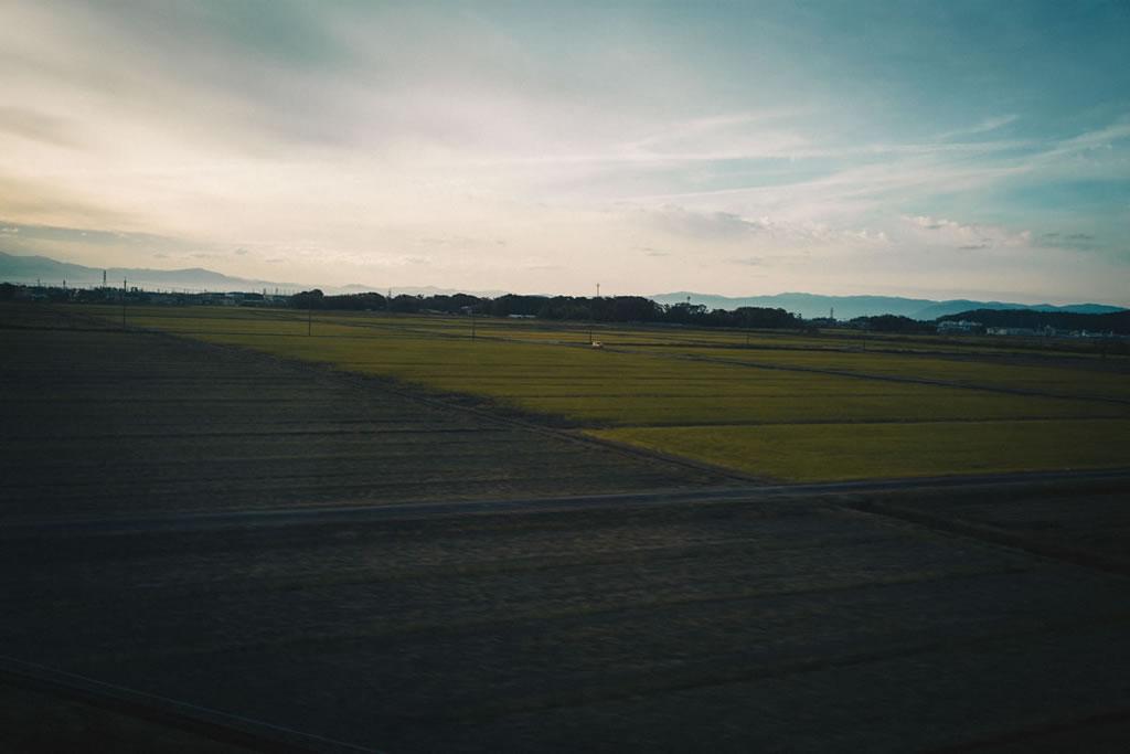 滋賀あたりのコメ産地|Leica M10 + Summilux 35mm f1.4
