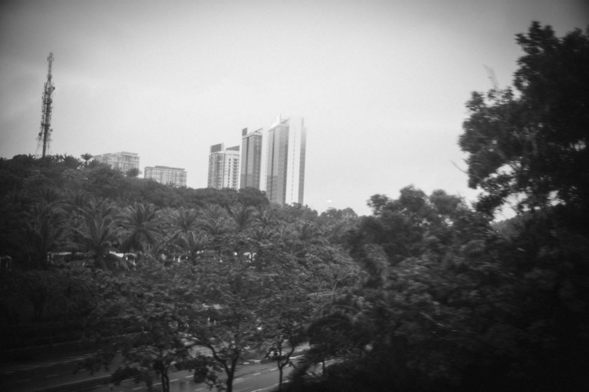 熱帯雨林の向こうに見える大都市|Leica M10 + Summilux 35mm f1.4