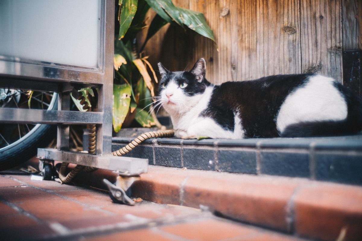 蒲田は聖地かもしれない|Leica M10 + Summilux 35mm f1.4