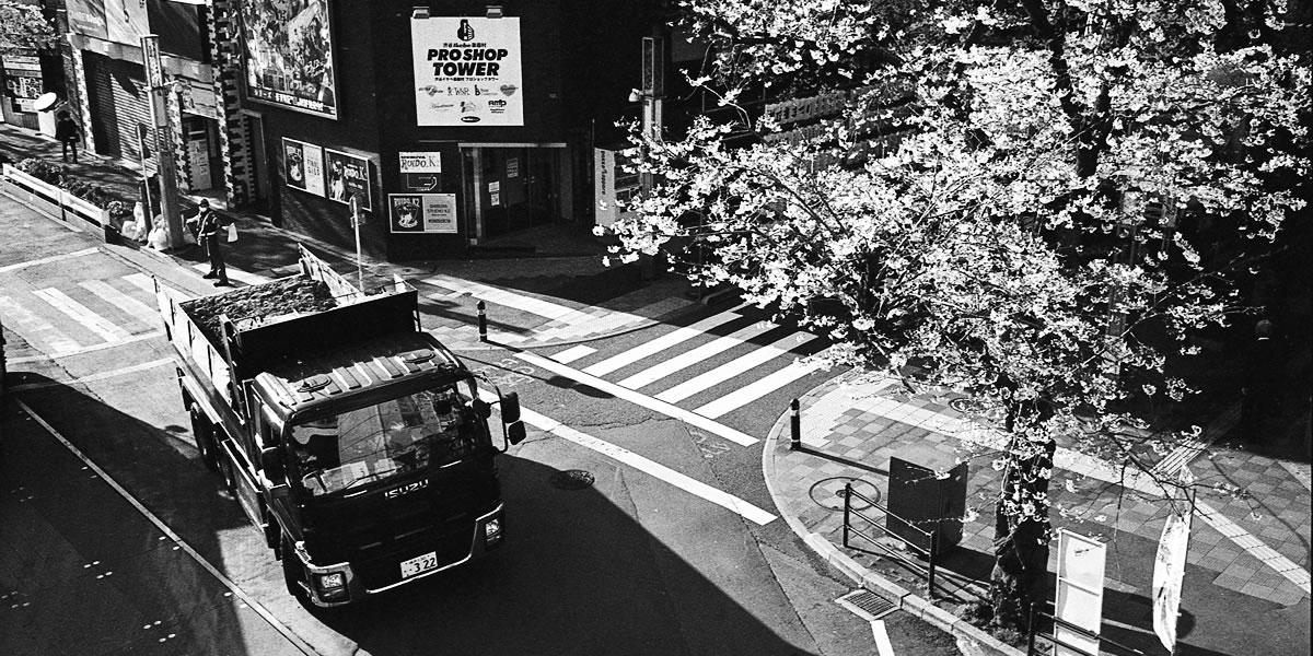 2021年春の渋谷区桜丘町 Leica M3 + C Sonnar T* 1.5/50 ZM + KODAK PROFESSIONAL TRI-X