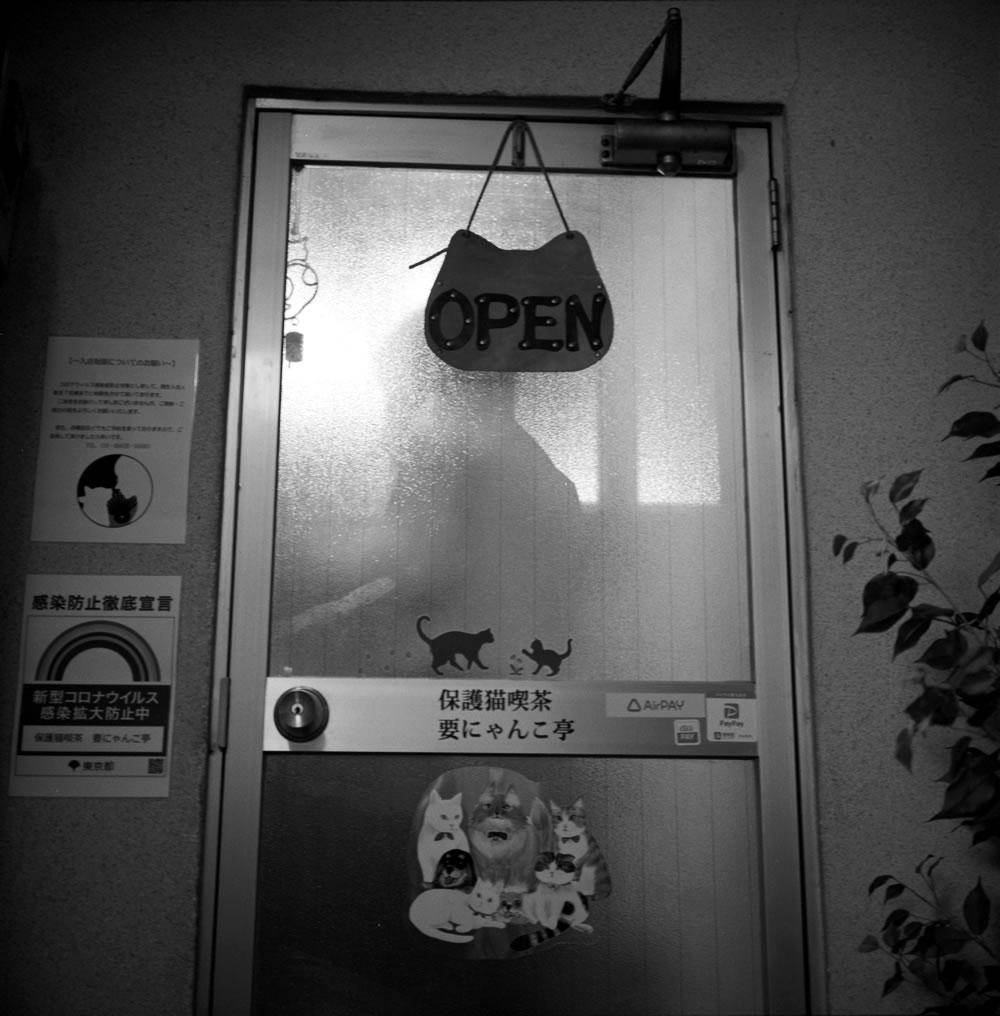 要にゃんこ亭の入り口|ROLLEIFLEX 2.8F + ILFORD HP5 PLUS
